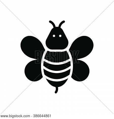 Black Solid Icon For Bee Honeybee Honey Wasp Fly Bug Bumblebee Hive Nature Animal Insect