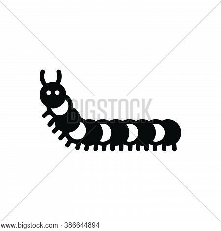 Black Solid Icon For Caterpillar Worm Green Larva Bug Coat-of-mail Hauberk Prejudicial Insect Creatu