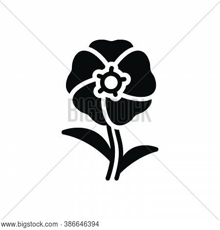 Black Solid Icon For Hollyhock Althaea Malvaceae Alcea-rosea Blooming Natural Flower Botanical