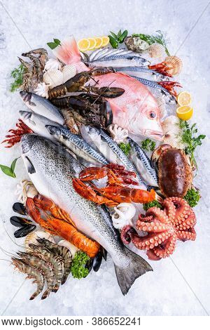 Top view Variety of fresh luxury seafood, Lobster salmon mackerel crayfish prawn octopus mussel red snapper scallop and stone crab, on ice background in seafood market.