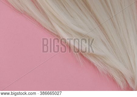 Blond Hair Concept . Blond Hair Texture. A Lock Of White Hair On A Light Pink Pastel Background.hair