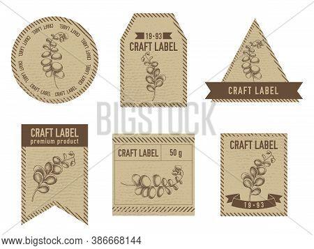 Craft Labels Vintage Design With Illustration Of Kalanchoe Stock Illustration
