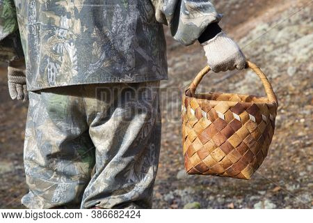 Mushroom Picker In The Forest With A Basket. Collecting Wild Plants.