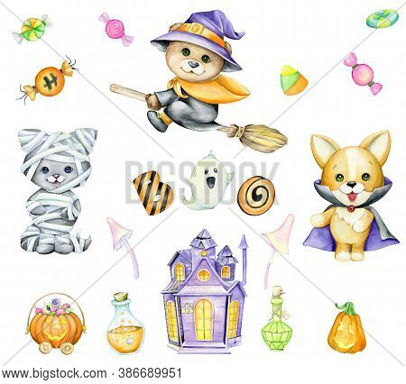 Bear, On A Broom, Cat, In A Costume, Mummies, Dog, In A Costume Of Dracula, Haunted House, Sweets, P