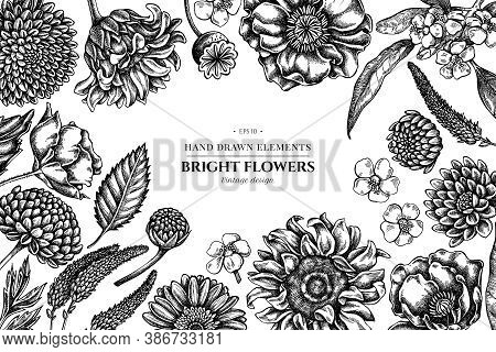 Floral Design With Black And White Poppy Flower, Gerbera, Sunflower, Milkweed, Dahlia, Veronica Stoc