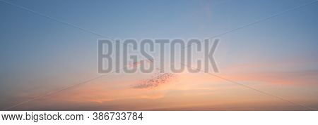 Panorama Sky In Pastel Colors In The Sunset With Fluffy Clouds.