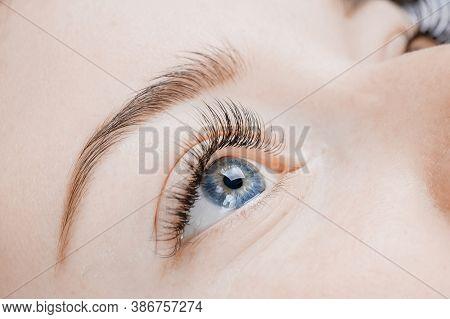 Eyelash Extension Procedure. Beautiful Female Eyes With Long Lashes, Closeup
