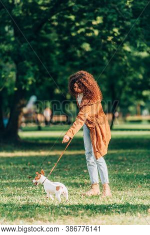 Selective Focus Of Curly Woman In Raincoat Walking On Leash Jack Russell Terrier On Meadow In Park