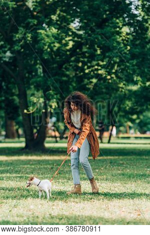 Selective Focus Of Woman In Raincoat Walking On Leash Jack Russell Terrier On Meadow In Park