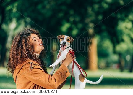 Side View Of Young Woman In Raincoat Holding Jack Russell Terrier With Sticking Out Tongue In Park