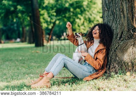 Selective Focus Of Excited Woman In Raincoat Playing With Jack Russell Terrier On Grass Near Tree In