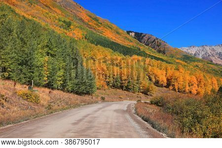 Colorful Aspen trees along scenic Last Dollar road in Colorado San Juan mountains