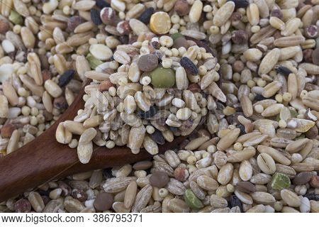 Miscellaneous Grains, Millet, Minor Grains, Various Grains.