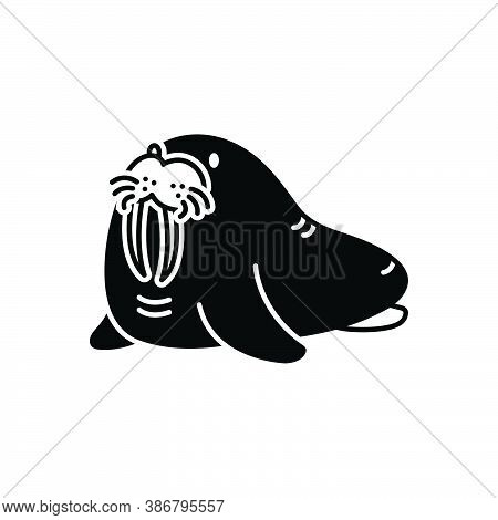 Black Solid Icon For Walrus Odobenus Pinniped Sea-horse Sea-cow Mammal Nature Ocean Predator Bizarre