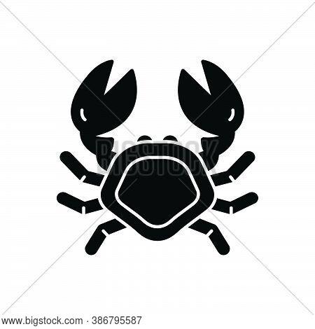 Black Solid Icon For Crab Lobster Pagurian Crustacean Underwater Mammal Fish Animal Marine
