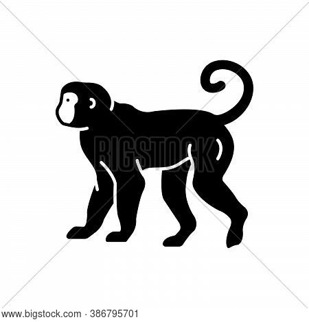Black Solid Icon For Monkey Lemur Primate Catarrhine Platyrrhine Jump Baboon Pet Chimpanzee Omnivore