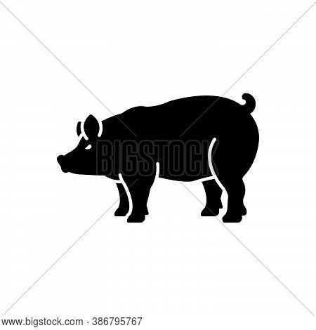 Black Solid Icon For Pig Boar Pork Piglet Farm Hog Scrofa Grunter Squealer Swine Hoofed Livestock Do
