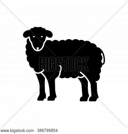 Black Solid Icon For Sheep Ewe Cattle Farm Give Wool Lamb Ovis Herd Herbivorous Hoof Horned Pet Anim