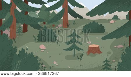 Natural Forest Landscape Vector Flat Illustration. Wild Woods Scenery With Spruces, Stumps, Bushes,