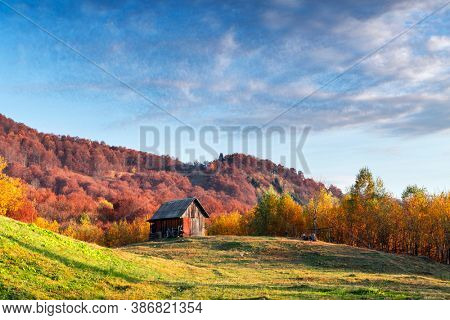 Picturesque autumn meadow with wooden house and red beech trees in the Carpathian mountains, Ukraine. Landscape photography