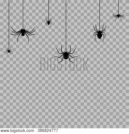 Set With Spider Silhouette. Halloween Decoration Or Tattoo Template. Simple Widow Outline Sketch. Ho