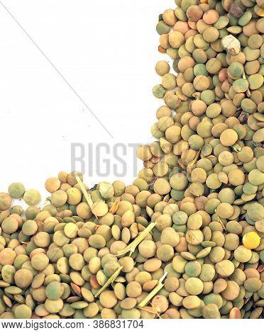 Close-up Natural Organic Dried Lentils,organic Dried Lentils,