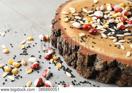 Mixed Vegetable Seeds And Wooden Log On Grey Table, Closeup
