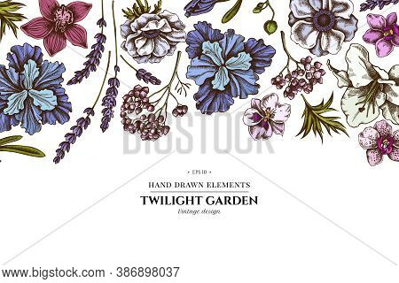 Floral Design With Colored Anemone, Lavender, Rosemary Everlasting, Phalaenopsis, Lily, Iris Stock I