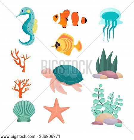Set From Seahorse, Turtle, Exotic Fish, Clown Fish, Jellyfish, Starfish, Seashell, Corals, Underwate