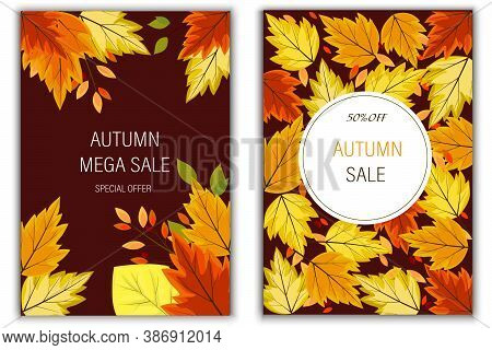 Autumn mega sale up to 50%, special offer. Two vertical banners for autumn big discounts. Bright leaves, twigs, berries in a collage. Vector illustration.