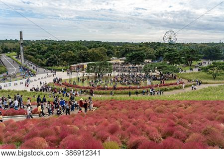 Ibaraki Prefecture, Japan - Oct 20, 2019 : Crowded People Going To The Miharashi Hill To See The Red