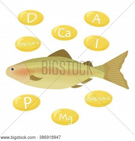 Fish And Vitamins That Contains Fish Oil, Fatty Acids Isolated On White Background Stock Vector Illu
