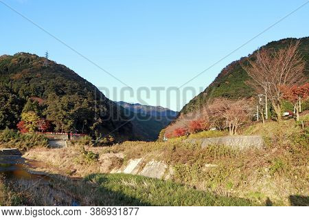 The Tree At Cordillera Green Yellow And Red Color At Nishikyo In Kyoto Japan. Watercourse Among The
