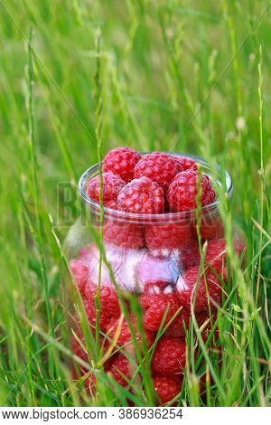 Big Beautiful Ripe Raspberries In A Jar On Green Grass