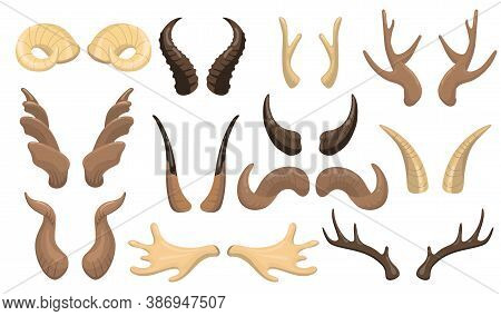 Horns And Antlers Set. Ram, Reindeer, Moose, Cow, Deer, Stag Horny Parts Isolated On White Backgroun