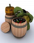 3D render of a tortoise bobbing for apples in a barrel poster
