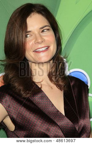LOS ANGELES - JUL 27:  Betsy Brandt at the NBC TCA Summer Press Tour 2013 at the Beverly Hilton Hotel on July 27, 2013 in Beverly Hills, CA