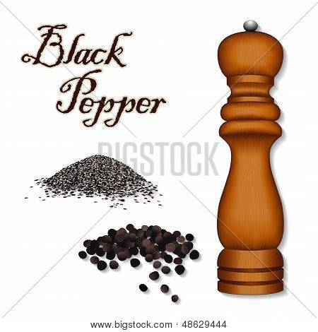 Black Pepper, Wood Spice Mill