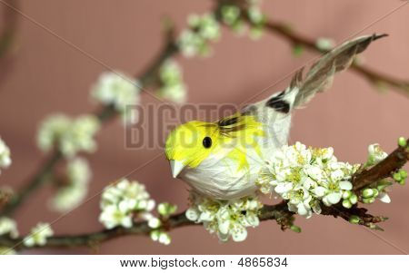 Sparrow On A Blooming Plum-tree Branch