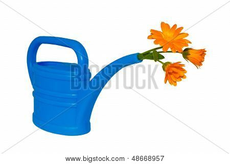 Light-blue Watering Pot With Orange Flower At Its Spout