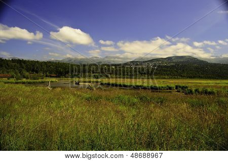Potters Marsh Alaska