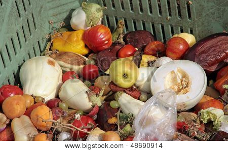 scraps of rotten fruit and vegetables used as manure in a farm poster