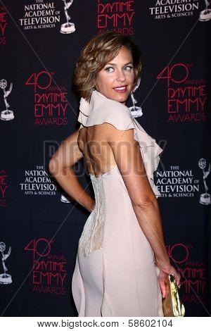 Arianne Zucker at the 2013 Daytime Creative Emmys, Bonaventure Hotel, Los Angeles, CA 06-14-13