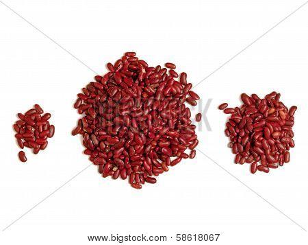 Bean Counter Accounting Banking Concept
