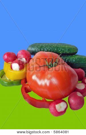Fresh vegetables isolated