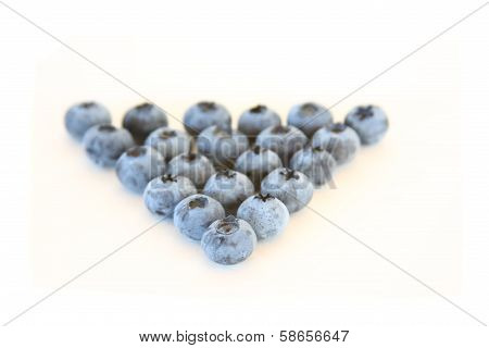 Blueberry Defence