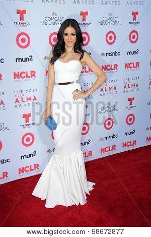 Edy Ganem at the 2013 NCLR ALMA Awards Arrivals, Pasadena Civic Auditorium, Pasadena, CA 09-27-13