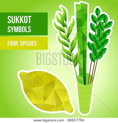 Sukkot Symbols