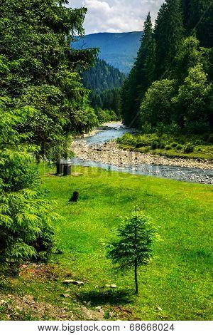 Wild Mountain River In Summer