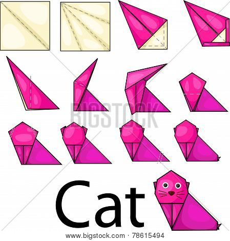 Illustrator of cat origami